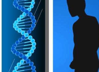 DNA Persönlichkeitstest