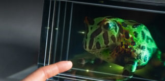 looking-glass-3d-display