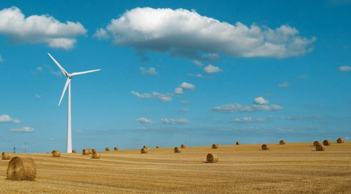 Wind turbine standing in the field during a beautiful day.